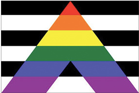 """A rainbow """"A"""" against a """"straight"""" background is the Straight Allies Pride flag"""